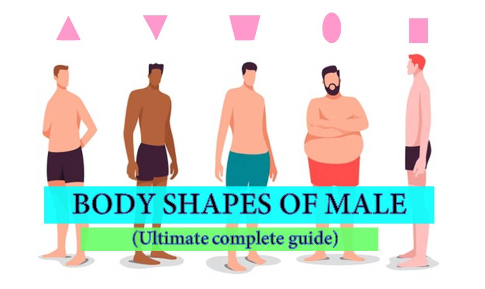 body shapes of male